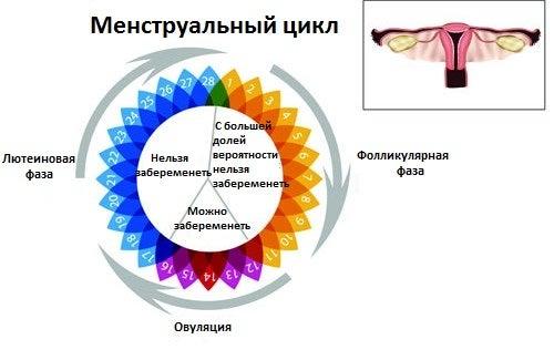 Menstruacija-500x325