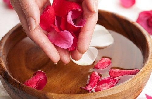 Розовая вода: как ее изготовить и в чем ее польза