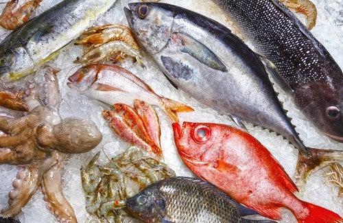Вредная для здоровья рыба, которой следует избегать
