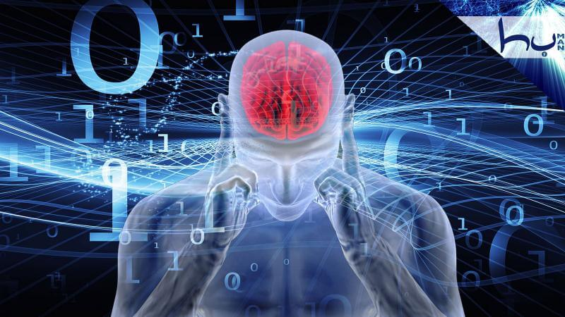 Мозг во время сна активизирует память
