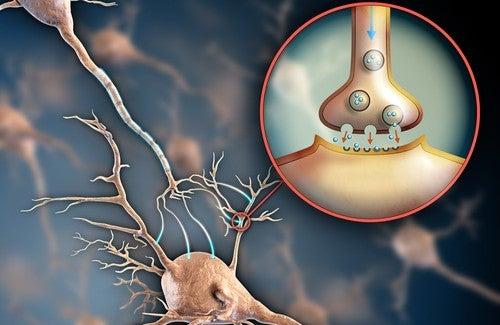 6 способов укрепить нервную систему