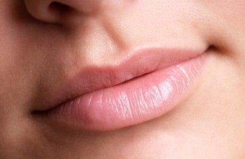 Как увеличить губы натуральными средствами