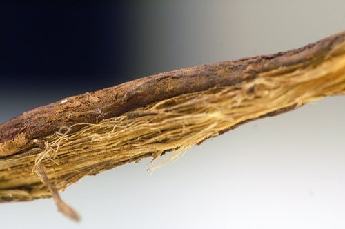 лакрица поможет вылечить аллергический ринит