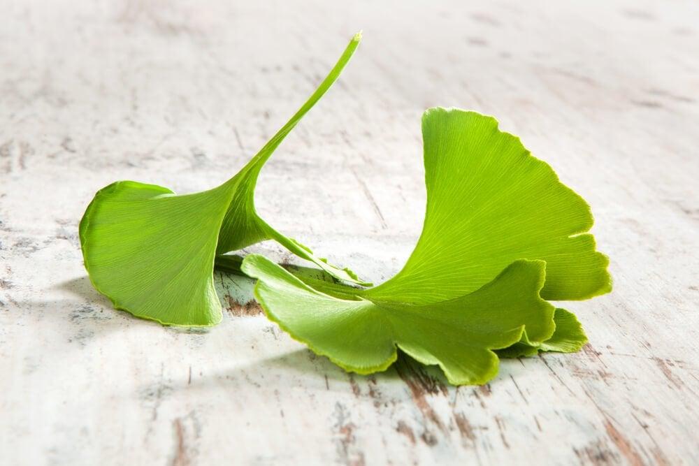 Некоторые растения помогают укрепить нервную систему