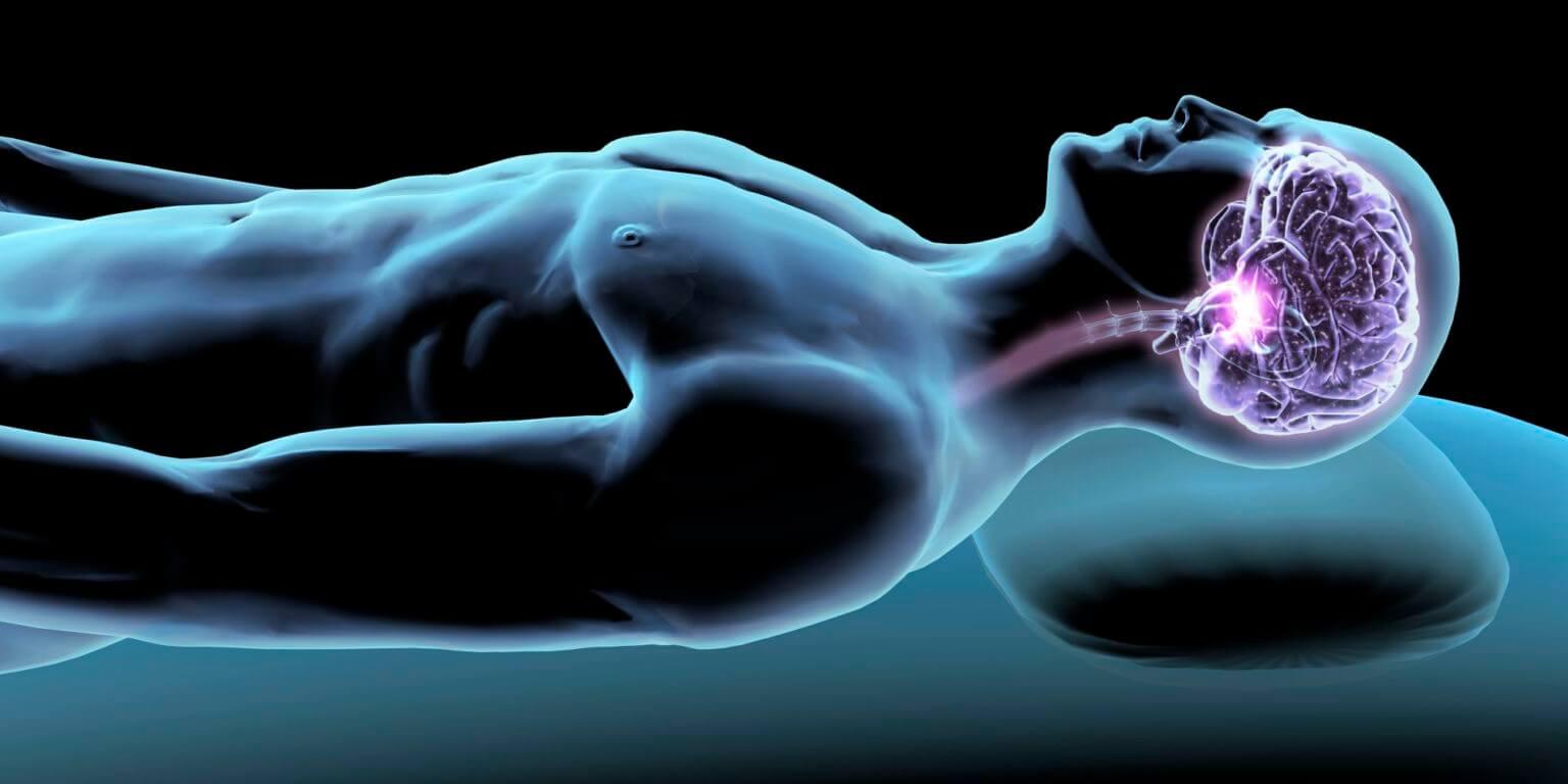 Мозг во время сна продолжает активно работать