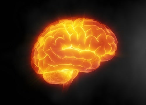 7 способов позаботиться о своем мозге