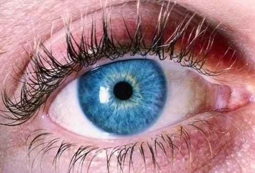Как сохранить зрение: 5 простых советов