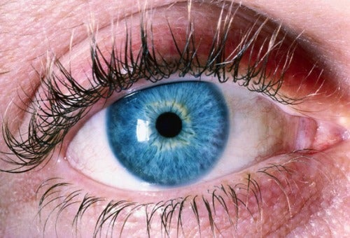 Альцгеймер-глаза