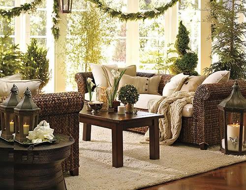 Комнатные растения, которые очищают воздух в доме