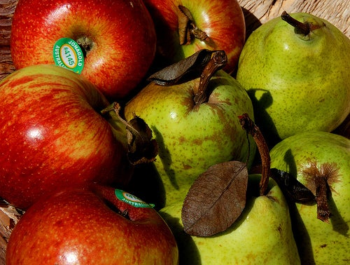 груша-яблоко-Leonard-John-Matthews