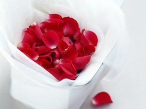 лепестки-роз