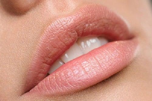 Домашний уход за губами: натуральные питательные средства