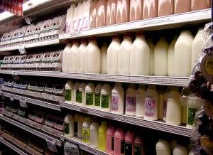 молочные продукты вредны для кишечника