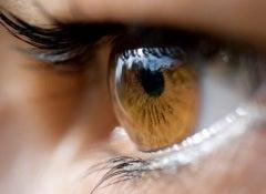 цвет-глаз