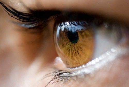 Радужная оболочка глаз: о чем она может рассказать?
