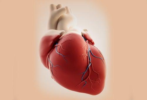забота-о-сердце