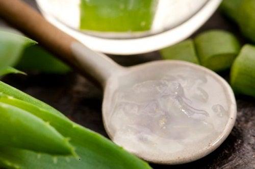 Aloe-vnutr