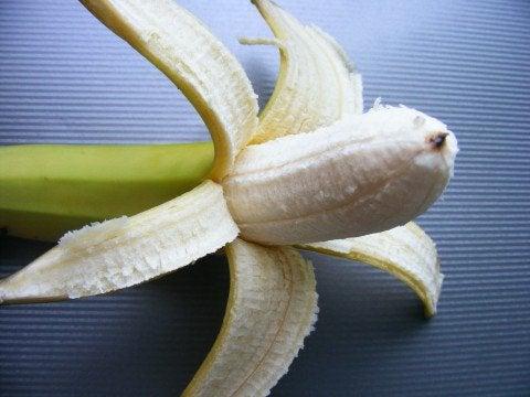 banan-Emilian-Robert-Vicol