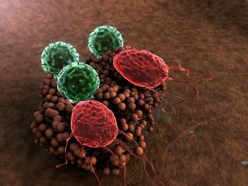 8 привычек, которые разрушают иммунную систему