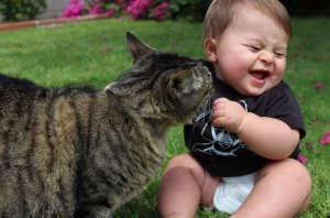 кошка-и-ребенок