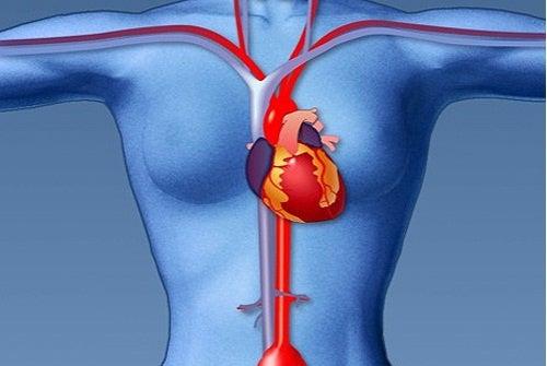 Как правильно заботиться о сердце женщине