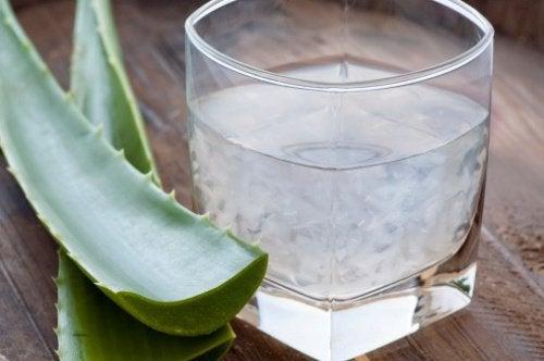 Растения-энергетики: лучшие настои для бодрости тела и духа