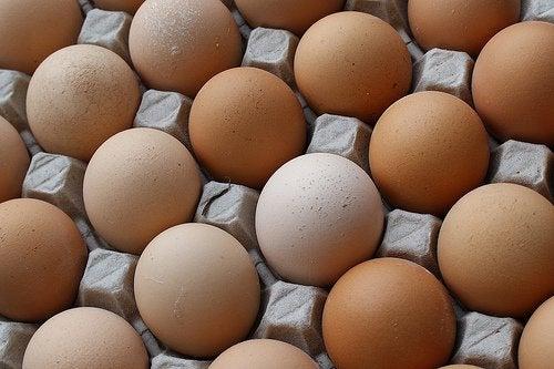 Интересные факты о яйцах