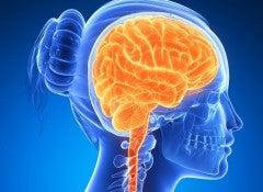 stimulyacia-mozga