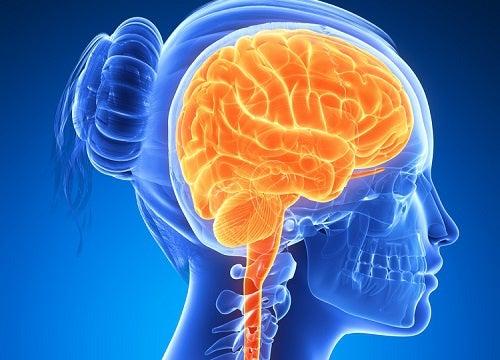 6 продуктов для повышения активности мозга!