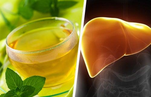 десмодиум и здоровье печени