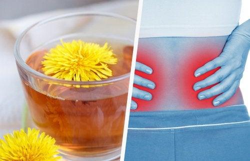 5 простых способов очистить почки