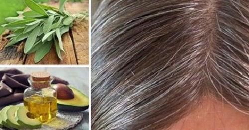 Причины появления седых волос и натуральные средства ухода за ними