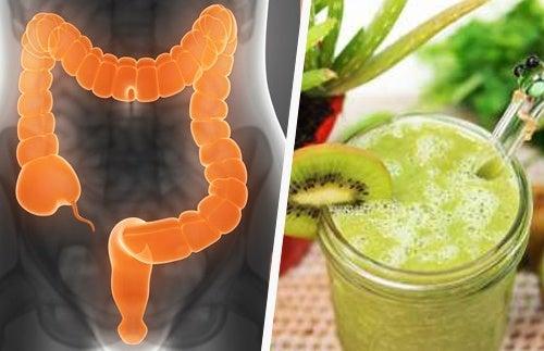 Три полезных напитка для раздраженного кишечника