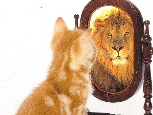 Снижать вес - повышать свою самооценку