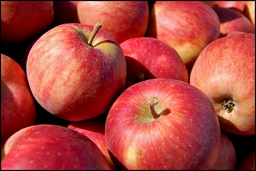 Яблоки и цвета