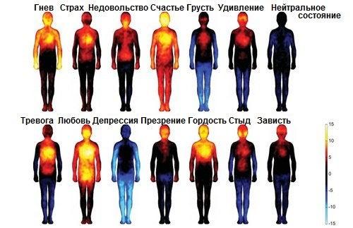 Какой эффект оказывают негативные мысли и эмоции на наше тело?