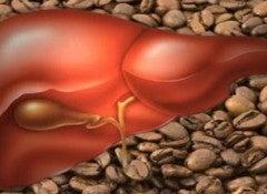 Печень и Потребление кофе