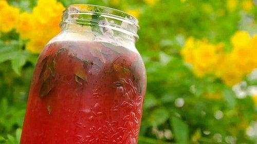 Коктейли и напитки из арбуза
