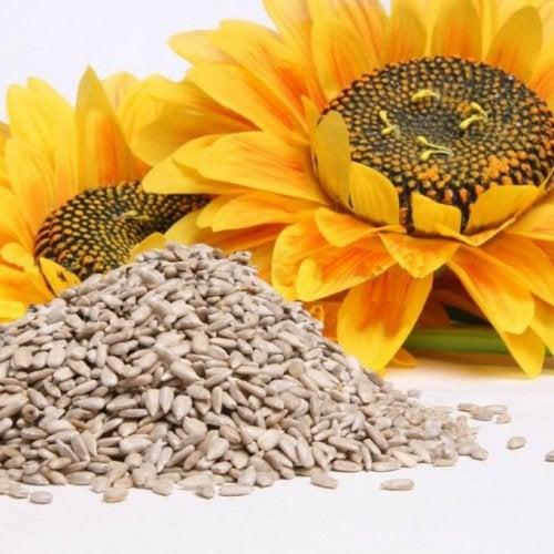 Семена подсолнуха - источник кальция