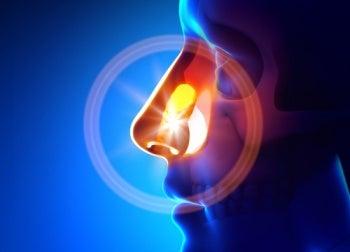 Воспаление и синусит