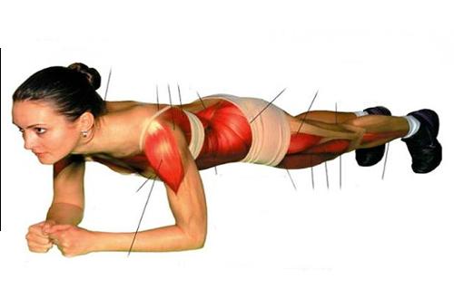 Упражнение «планка» заставит работать все тело!