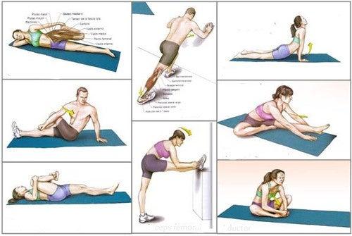 9 лучших упражнений на растяжку, которые помогут вам оставаться в форме