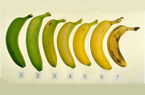 Когда лучше всего есть бананы? Спелыми или немного недозрелыми?