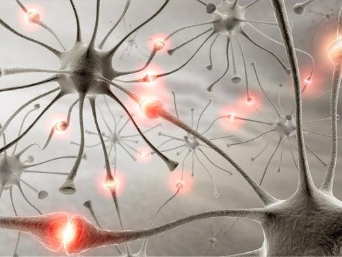 Здоровый мозг и прогулки