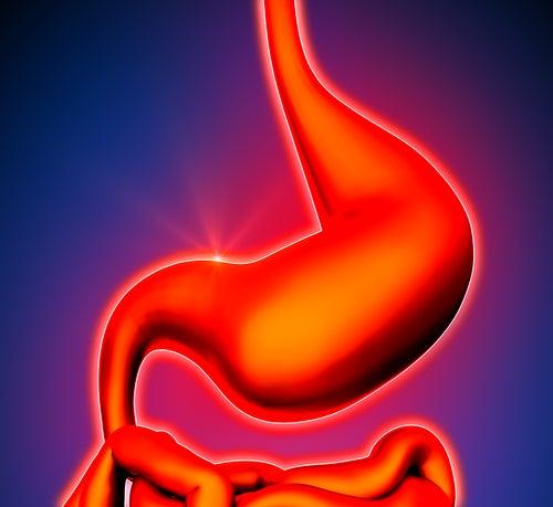 Проблемы с пищеварением и свойства имбиря
