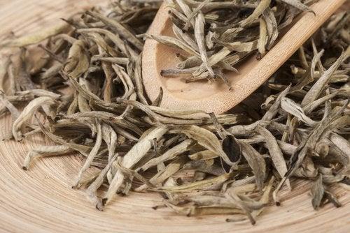 2 вида чая, чтобы восполнить недостаток магния в организме