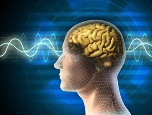 10 способов поддерживать мозг молодым и активным