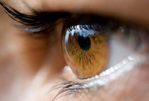 Стресс может ухудшить зрение