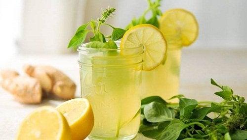 Лимон, имбирь и мята