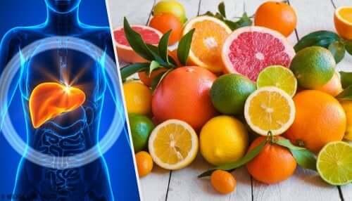 Лечение ожирения печени и настои